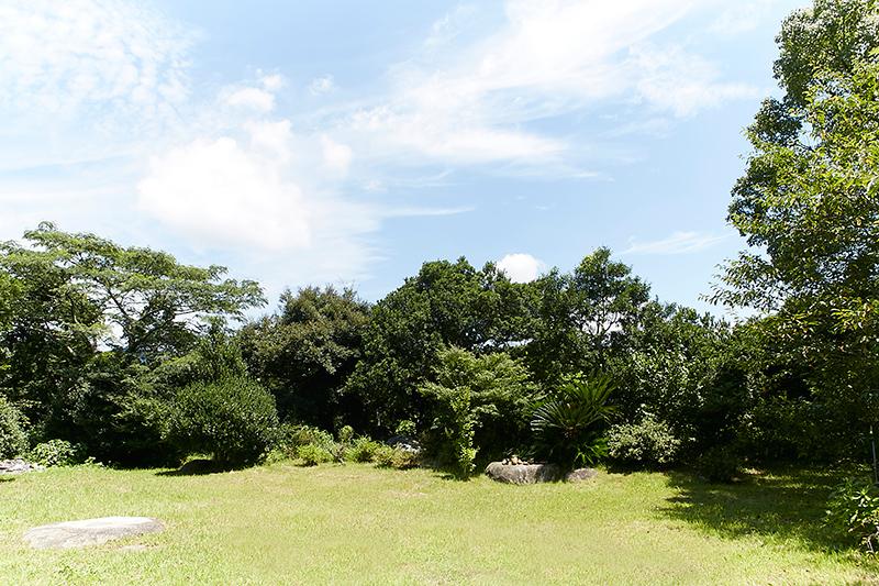 菅ノ谷窯 庭